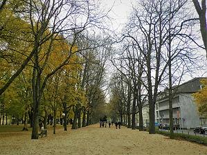 Bonn, autumn, germany