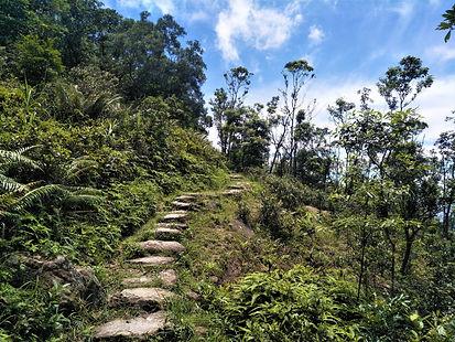 lantau island, lantau trail, view, mountain, stairs, hiking, hong kong