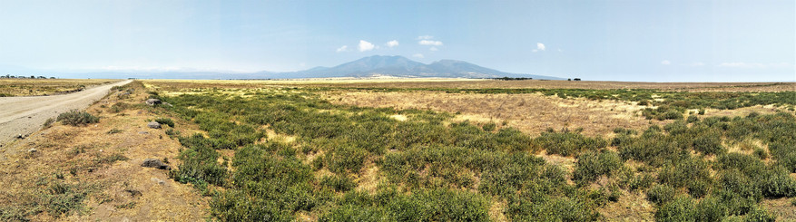 The flat plains