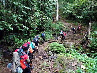 kokoda trail, track, papua new guinea, jungle, mountain, hike, trek