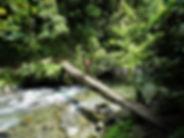 kokoda trail, track, papua new guinea, hike, trek, jungle, mountain, river