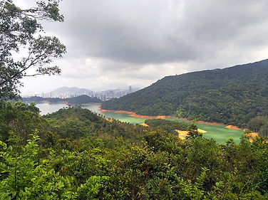 hong kong, trail, mountain, hiking, view, shing mun reservoir