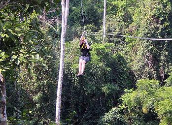 flight of the gibbon ziplining bangkok thailand