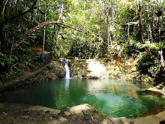 fiji suva forest park pool