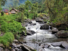 kokoda, trail, trak, papua new guinea, forest, jungle, mountain, hike, trek, river, templeton's crossing 2