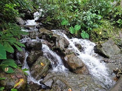 kokoda, trail, trak, papua new guinea, forest, jungle, mountain, hike, trek, waterfall
