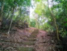 hong kong, trail, mountain, hiking, view, tai lam chung