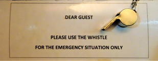 Whistle instructions