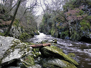 Fairy Glen, snowdonia, wales