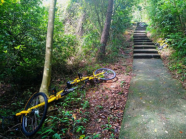 hong kong, trail, mountain, hiking, view, lantau, tung o ancient walk, bicycle, stairs