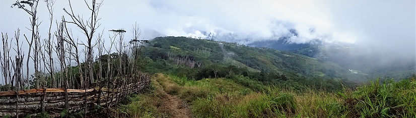 kokoda, track, trail, papua new guinea, hike, trek, mountain, jungle, view