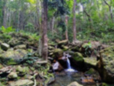 hong kong, trail, mountain, hiking, view, island, waterfall