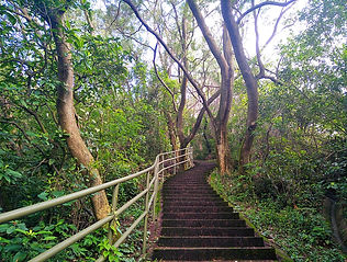 hong kong, trail, mountain, hiking, view, stairs