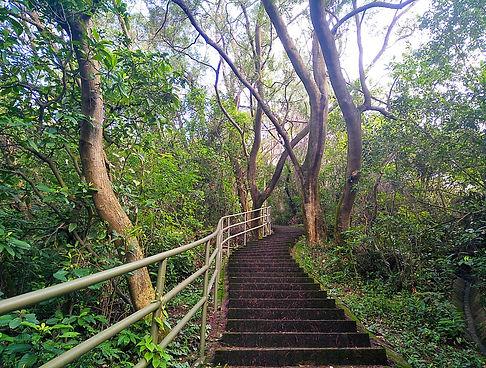 hong kong, trail, mountain, hiking, view, stairs