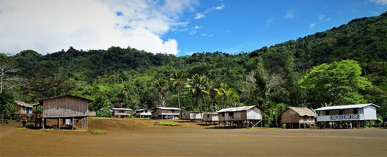kokoda trail, track, papua new guinea, hike, trek, jungle, mountain, menari, village