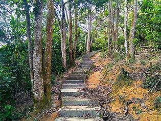 wilson trail, hong kong, hiking, mountains, stairs