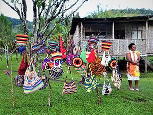 kokoda trail, track, papua new guinea, hike, trek, efogi, bilum bag
