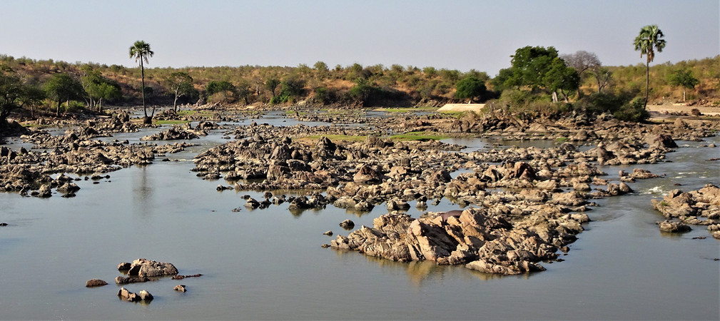 The Great Ruaha River