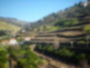 duoro rail trail, porto, portugal