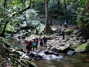 kokoda trail, track, papua new guinea, mountain, jungle, trek, hike, river