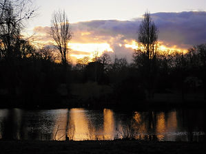 Hyde park, london, england, sunset