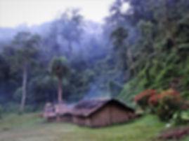 kokoda, track, trail, papua new guinea, hike, trek, mountain, jungle, templeton's crossing