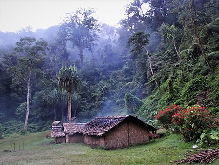 kokoda, track, trail, papua new guinea, hike, trek, mountain, jungle, templeton's crossing