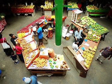 suva market fiji