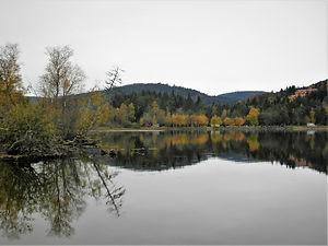 Titisee, lake titi, germany, reflection