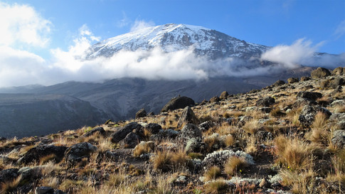 Kilimanjaro from the campsite