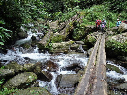 kokoda, trail, track, papua new guinea, hike, trek, river, logs