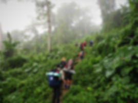 kokoda, trail, track, papua new guinea, hike, trek