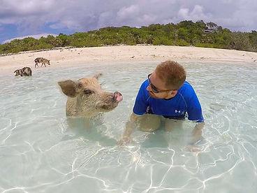 pig beach, exumas, bahamas