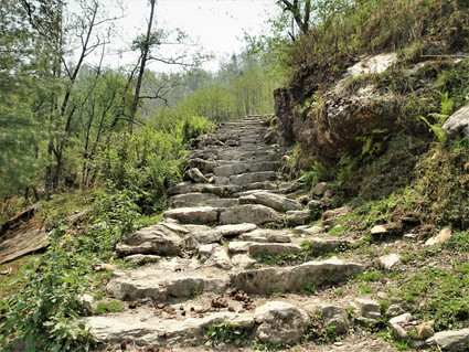 The steps continue