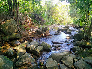 wilson trail, hong kong, hiking, view, mountains, water, river