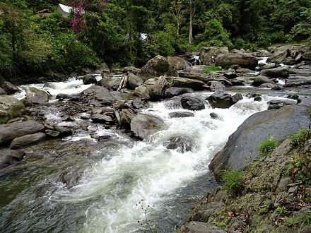 kokoda, trail, trak, papua new guinea, forest, jungle, mountain, hike, trek, river