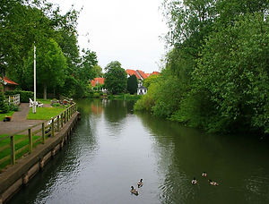 ribe, denmark, ducks, lake