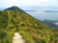 wilson trail, hong kong, mountain, hiking, view