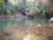 waterfall, gibbon experience, laos