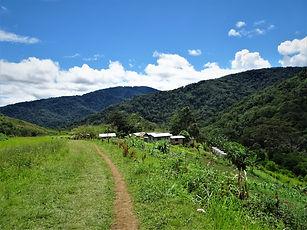 kokoda trail, track, papua new guinea, hike, trek, jungle, mountain, menari