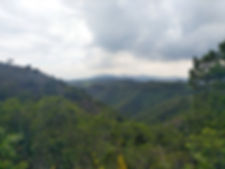 Hong Kong, trail, mountain, hiking, view