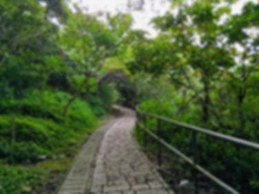 hong kong, trail, mountain, hiking, island