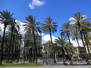 Piazza Castelnuovo, Palermo, sicily, italy, palm trees
