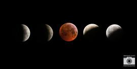 moon eclipse b.jpg