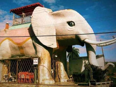 Conheça a casa elefante, que fica na cidade de Cordisburgo
