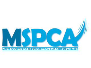 MSPCA's Yearly Survey 2017