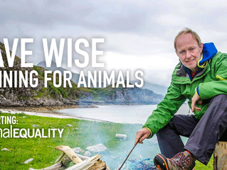 David Wise - Vegan Athlete Running for Animals