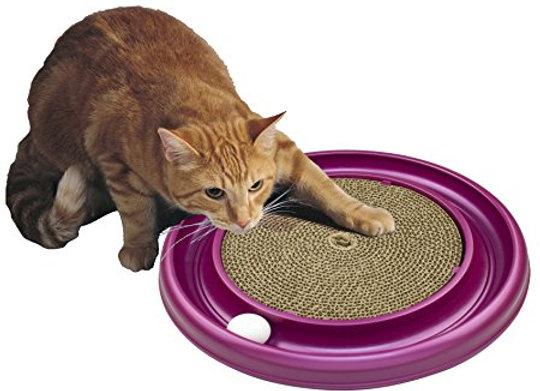 Sponsor a Cat Toy