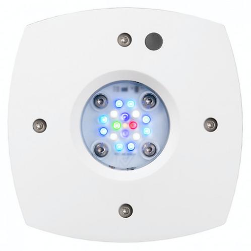 Illumination Prime 16 HD Reef LED Light Fixture - White