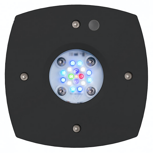 Aqua Illumination Prime 16 HD Reef LED Light Fixture - Black